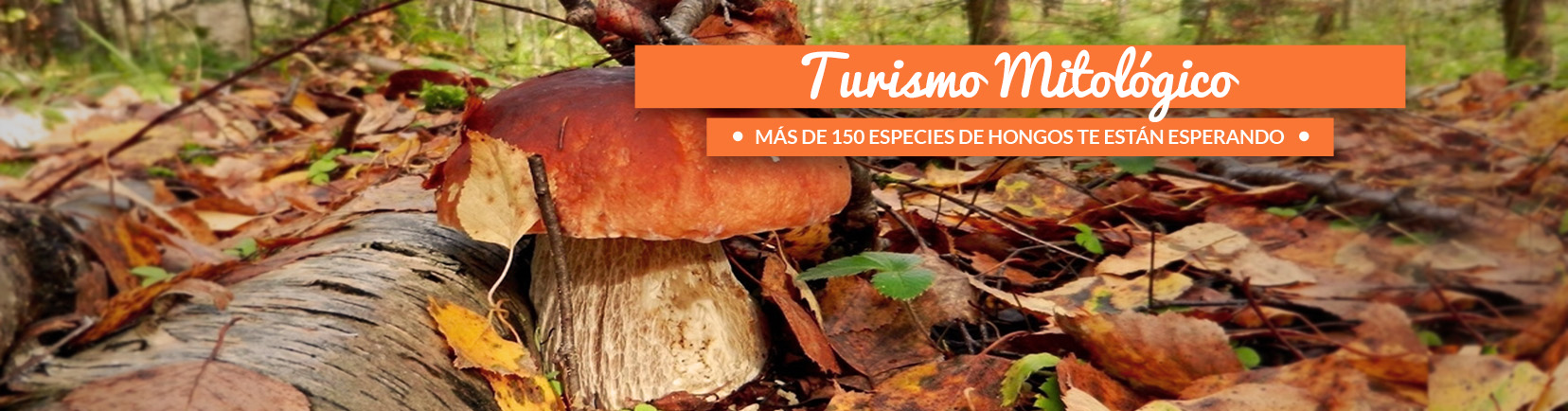 turismo_de_soria_turismo_mitologico